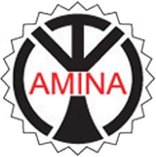 MECHES AMINA